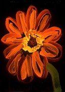 Alizarin Crimson Paintings - Gerber Daisy by David Rufo