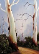 Landscapes Sculptures - Ghostgums by John Cocoris