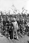 Giant Corn Man Print by Gerhardt Isringhaus