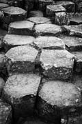 Stepping Stones Photo Prints - Giants Causeway Stones Northern Ireland Print by Joe Fox