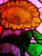Stain Glass  Work - Glass Sunflower by Allen n Lehman