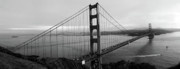 Barbara Teller - Golden Gate Bridge