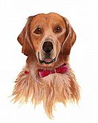 Portraits Of Pets Art - Golden Labrador by Nan Wright