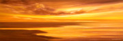 Sunset Posters Painting Framed Prints - Golden Panoramic Sunset Framed Print by Gina De Gorna