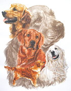Golden Retriever Mixed Media - Golden Retriever by Barbara Keith