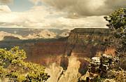Marilyn Wilson - Grand Canyon