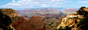 Panoramic Digital Art - Grand Canyon  by The Kepharts