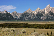 Rugged Photo Prints - Grand Teton WY Print by Christine Till
