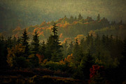 Autumn Landscape Digital Art - Grandfather Mountain by Ron Jones