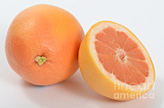Grapefruit Photos - Grapefruit by Photo Researchers, Inc.