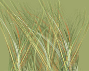 Improvisation Digital Art Prints - Grass Print by Ed Churchill