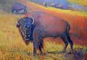 Bison Art - Grazing by Donald Maier