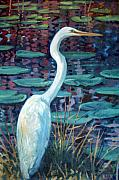 Egret Paintings - Great White Egret by Donald Maier