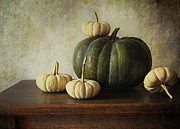 Melon Art - Green pumpkin and gourds on table  by Sandra Cunningham