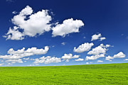 Clouds Photos - Green rolling hills under blue sky by Elena Elisseeva