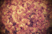 Dirty Digital Art Prints - Grunge flowers Print by Jaroslaw Grudzinski