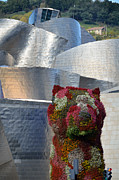 Guggenheim Photos - Guggenheim Museum Bilbao - 2 by RicardMN Photography