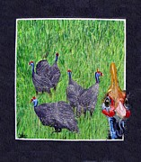 Greeting Cards Tapestries - Textiles Prints - Guinea Fowl Hello there Print by Sylvie Heasman