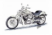Cruiser Originals - Harley Davidson V-Rod by Terence John Cleary