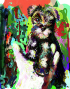 Schnauzer Puppy Framed Prints - Harley in Hand Framed Print by James Thomas