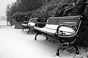White Snow Acrylic Prints - Have a Seat Acrylic Print by Joel Witmeyer