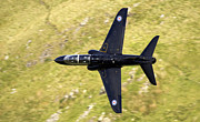 Berge Art - Hawk in Mach Loop by Angel  Tarantella