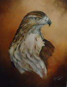 Julianna Wells - Hawk Study