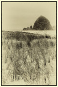 Sandy Beaches Posters - Haystack Rock on Cannon Beach Poster by David Patterson