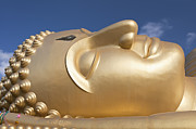 Gild Framed Prints - Head of a giant reclining Buddha statue Framed Print by Stefano Baldini