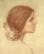 Brown Drawings Framed Prints - Head of a Girl Framed Print by John William Waterhouse