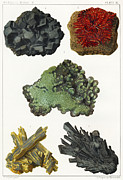 Simonin Prints - Heavy Metal Minerals Print by Sheila Terry