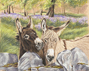 Donkey Pastels Framed Prints - Hee Haw Framed Print by Vanda Luddy