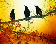 Blackbirds Prints - Here Comes The Sun Print by Gothicolors With Crows