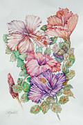 Texture Floral Drawings Prints - Hibiscus Drawing in Warm Tones Print by Carmen Gardell