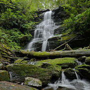 Stokes State Forest Prints - Hidden Falls  Print by Stephen  Vecchiotti