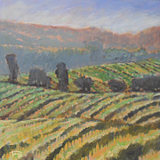 Calistoga Painting Posters - Hillside Vineyard Poster by Kip Decker