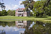 Live Oaks Originals - Historic Drayton Hall in Charleston South Carolina by Dustin K Ryan