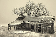 Old Cabin Photos - Home Sweet Home.. by Al  Swasey