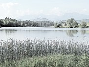 Alps Drawings - Hopfen Lake Bebele Fussen Germany by Joseph Hendrix