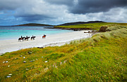 Four People Photos - Horse and riders on the beach  by Gabriela Insuratelu