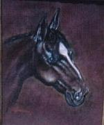 Animals Jewelry - Horse Portrait by  Gayle  Hartman