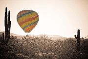 Phot Framed Prints - Hot Air Balloon On the Arizona Sonoran Desert In BW  Framed Print by James Bo Insogna