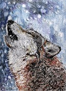 Winter Prints Drawings Prints - Howling Gray Wolf Print by J McCombie