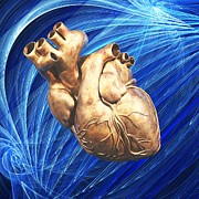 Biomedical Illustration Photos - Human Heart, Artwork by Laguna Design