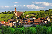 Haut-rhin Photo Prints - Hunawihr Alsace Print by Brian Jannsen