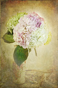 Textured Floral Framed Prints - Hydrangeas Framed Print by Stephanie Frey