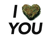 Sour Metal Prints - I Bud You Metal Print by The Personal Stash