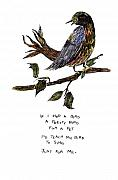 Singing Drawings - If I Had a Bird by Lily Hymen