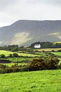 Irish Farm - Dingle Peninsula  Print by Gordon Wood