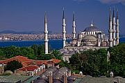 Turkey Metal Prints - Istanbuls Blue Mosque Metal Print by Michele Burgess